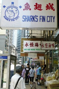 Mecca for shark fin trading: Des Voeux Road in Hong Kong. Photo: Hans Peter Roth